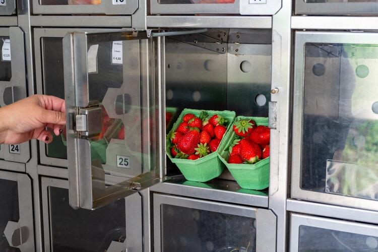 L'assortiment en produits des appareils de distribution automatique